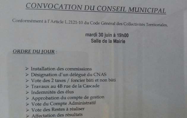 Conseil municipal, Mardi 30 juin 2020