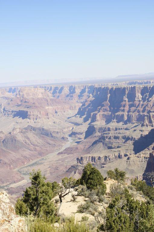 Grand Canyon, Las Vegas, Death Valley, Séquoias - du 25 au 30 septembre 2016