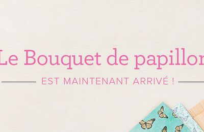 Promotion Bouquet de Papillons !
