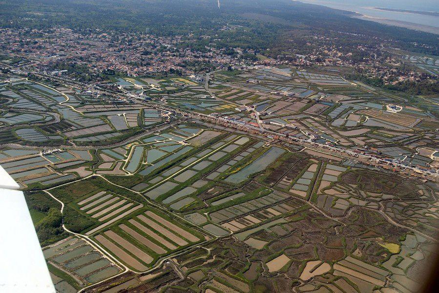Z2 Circuit-La-route-des-forts