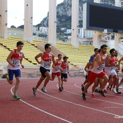JOURNEE MONDIALE ATHLETISME a MONACO