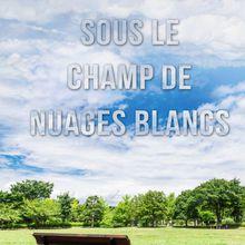 Sous le champ de nuages blancs de Philippe Dester