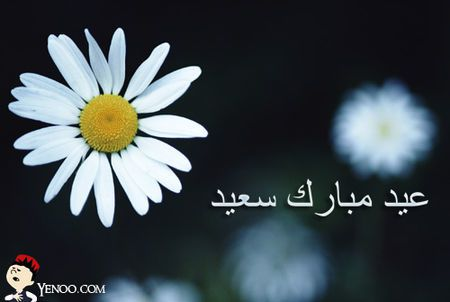 Aid al Adha Moubarak !!!!!!!!!!!!!!!!!!!!!!!!!!!!!! :)