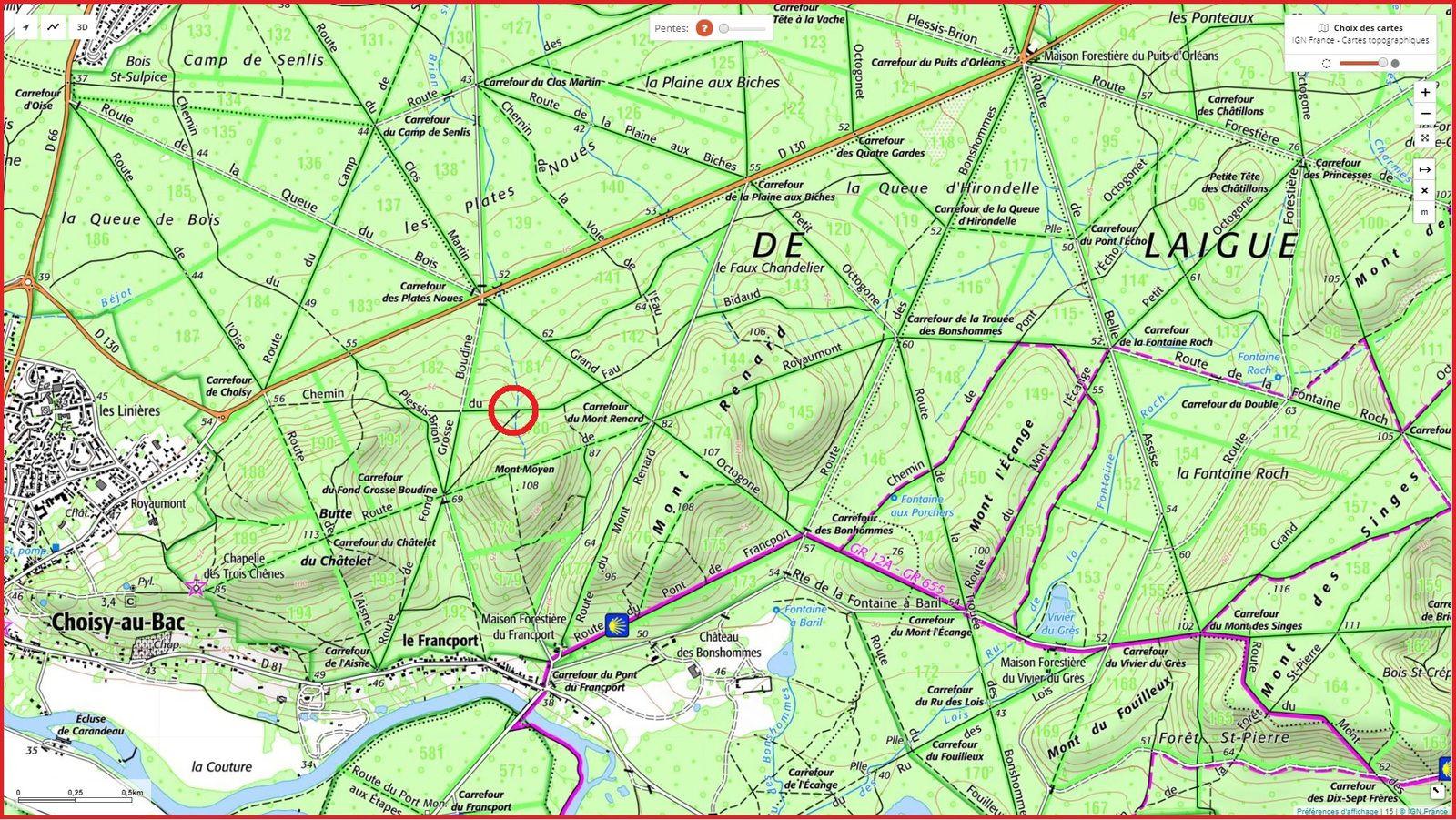 carrefour_Chemin du Fau Bidaud_Sentier (parcelle 180)