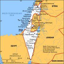 Les sauterelles du désert - ou les lions de Juda?