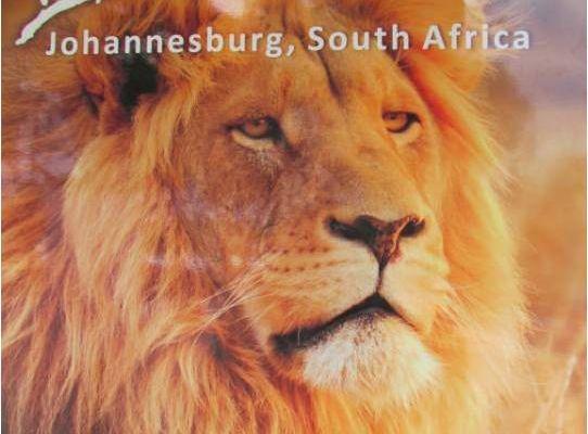Vacances en Afrique du Sud: le lion park et le musée de l'apartheid à Johannesbourg - 26 janvier 2012