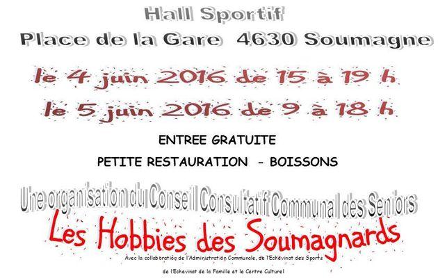 Exposition ce weekend du 4 et 5 juin à Soumagne - Vitrail Tiffany