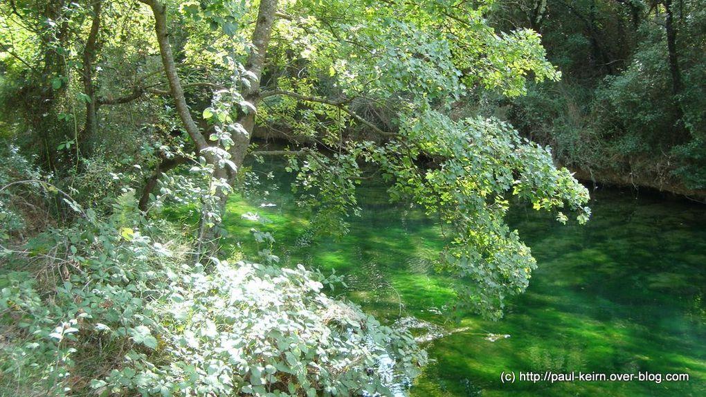 Comment ne pas penser à Monet en contemplant les eaux vertes du Caramy (Var - France) ?