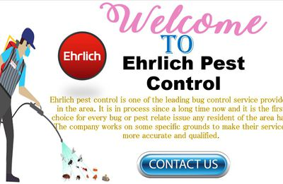 Ehrlich Pest Control: Quick and easy methods of pest control