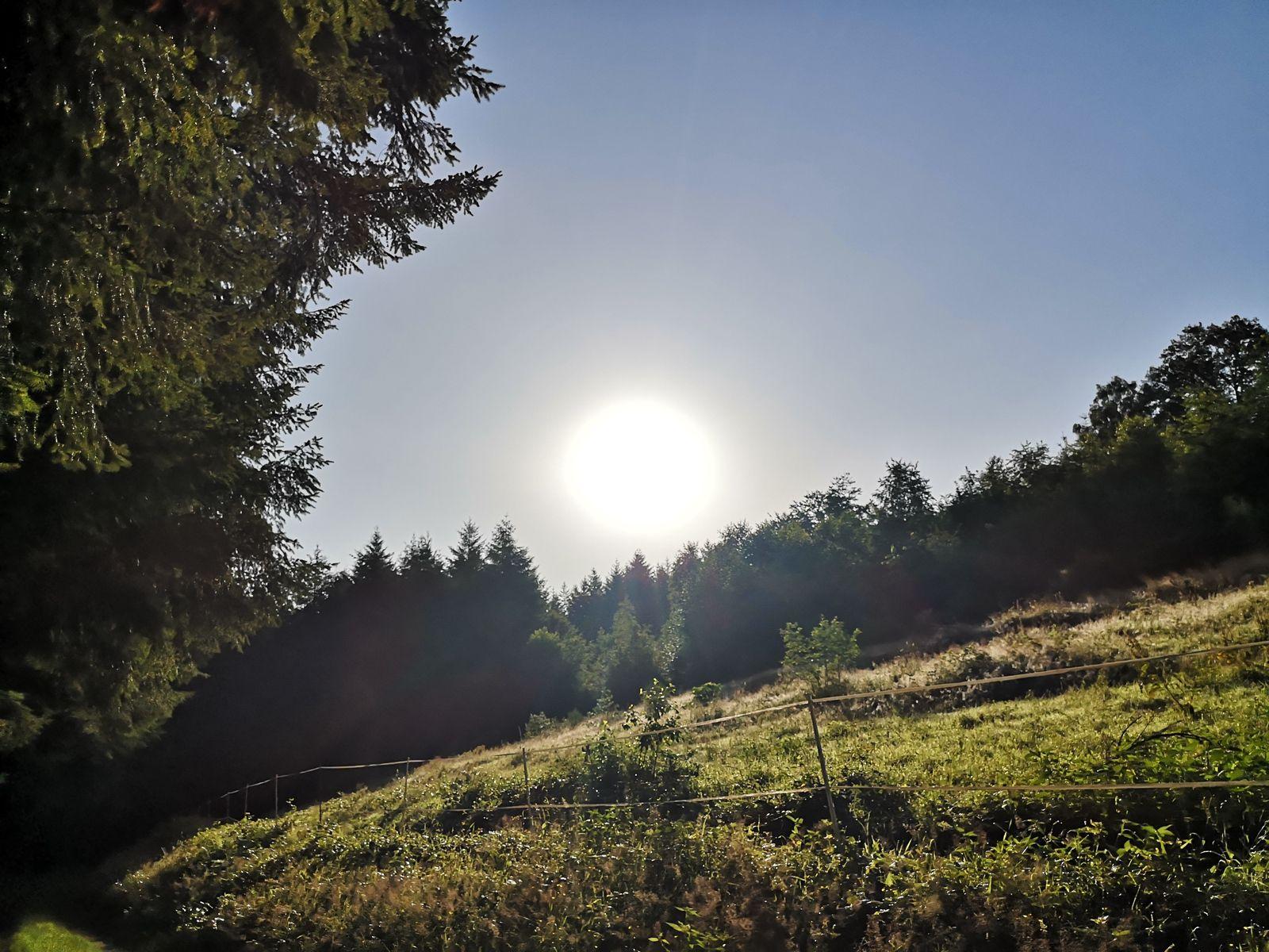 Quel bonheur, ce soleil radieux!!!
