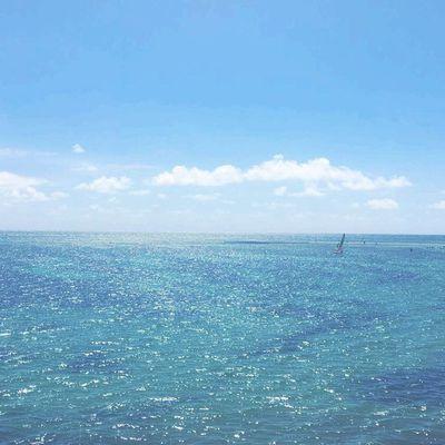 A la découverte de la Martinique...