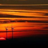 Éoliennes: le livre choc qui dénonce un scandale international