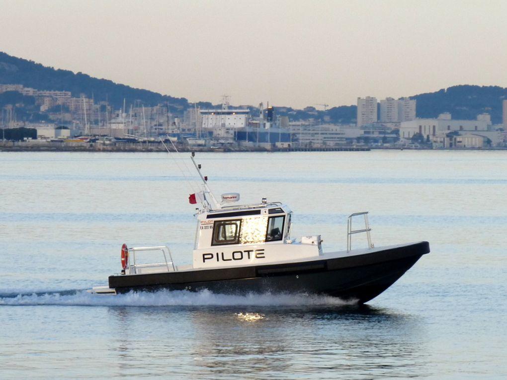PIPADY , pilotine du port de Toulon