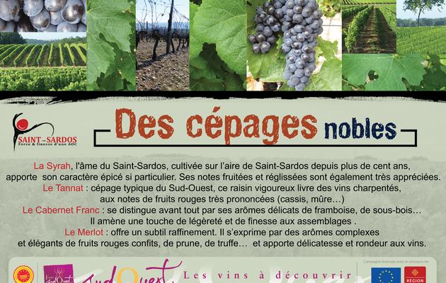 Design du Vin - Agence de Création pour les Châteaux et Domaines