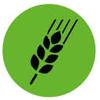 L'automne n'arrête pas les Incroyables Comestibles du lotissement de la Miochaie.