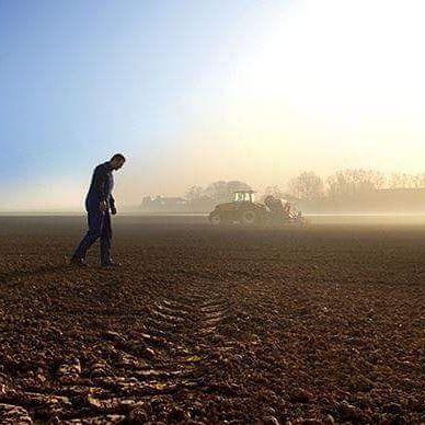 S.O.S ou la détresse de notre agriculture  §§§
