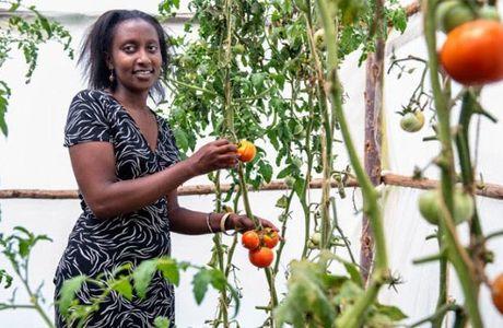 PEA-jeunes. Un programme pour soutenir les jeunes dans les filières agropastorales