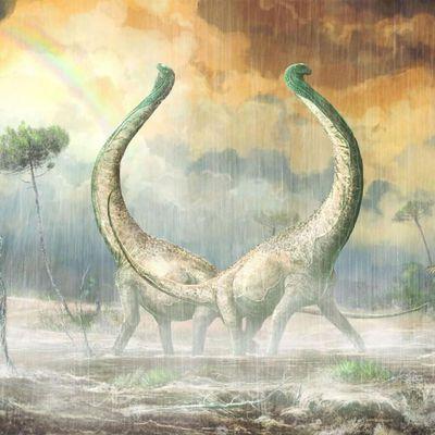 Nouveau titanosaure du Crétacé moyen en Tanzanie : Le Mnyamawamtuka