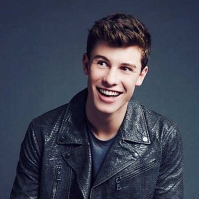 """Shawn Mendes:Number one with """"Treat You Better"""" ?"""