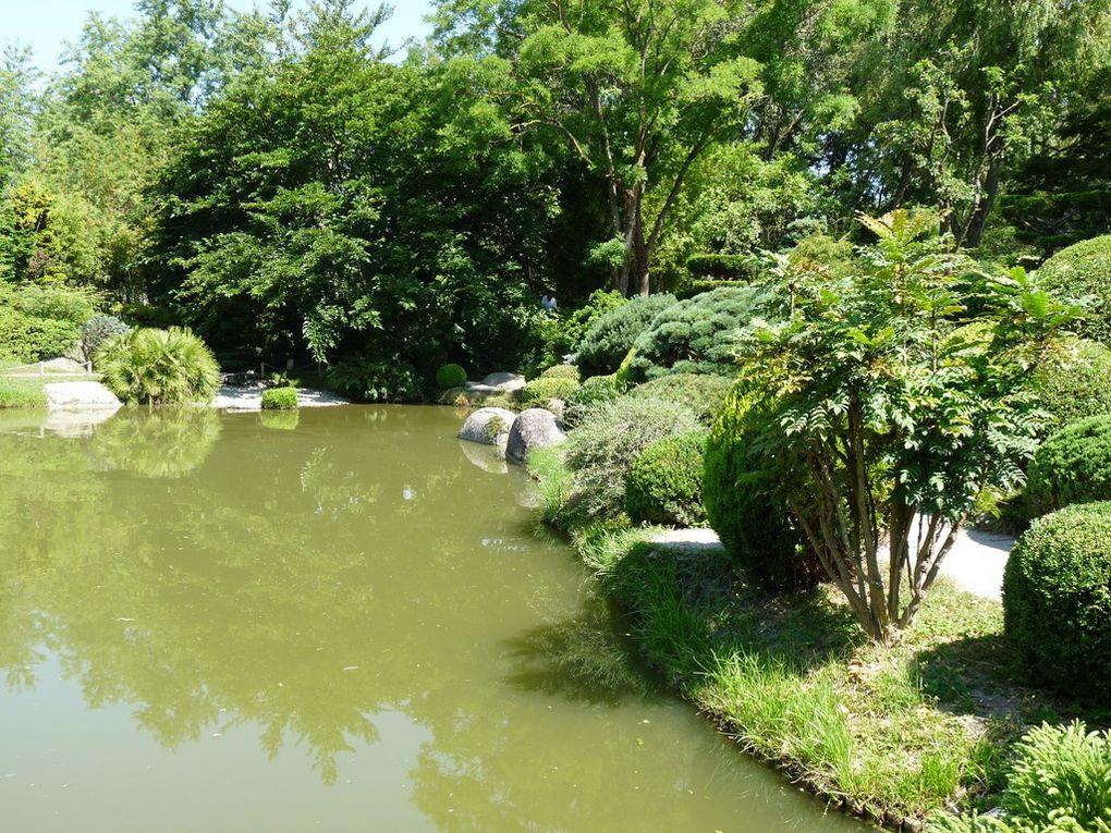 Nature 10 , dans un parc à Toulouse
