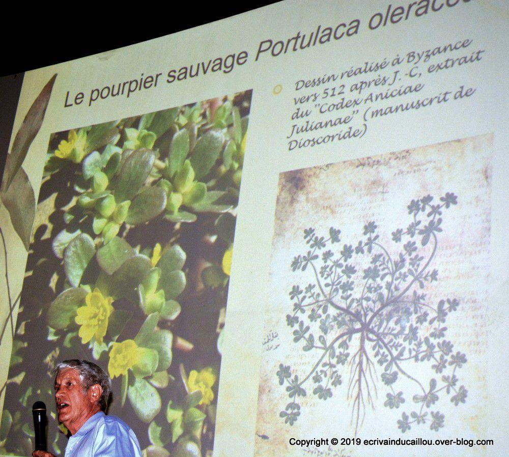 Photo d'une conférence de Bernard Suprin au Rex en 2019 et un échantillon des ses ouvrages