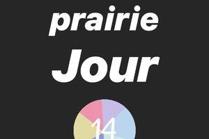 Journal de la prairie jour 14