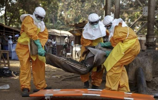 Guinea reports eight Ebola cases including three deaths