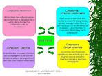 manifestations neuro physiologiques images - Google Search