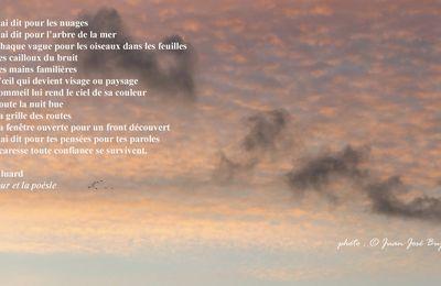 Je te l'ai dit pour les nuages, Paul Éluard, L'Amour et la poésie