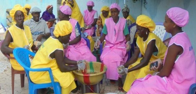 SENEGAL : L'ONG La Lumière forme des femmes rurales aux techniques de transformation de produits agricoles et maraichers à Kolda.