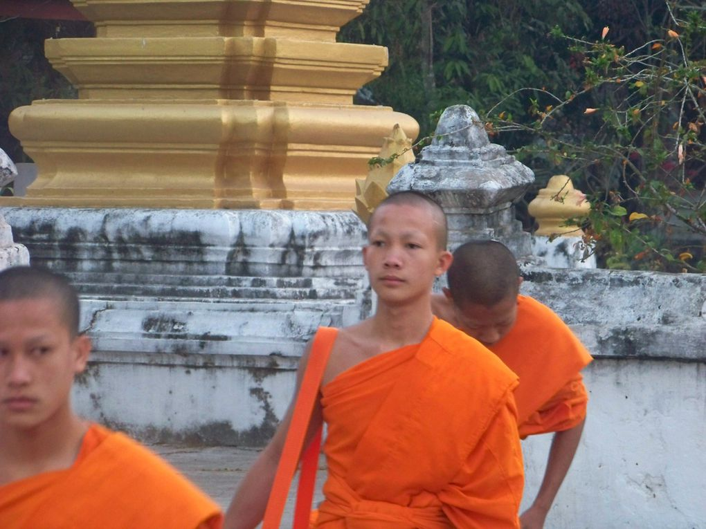 Les enfants, les moines, les statues, le Mékong, les temples...