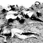 Le massacre des haïtiens de 1937 ou massacre du persil - coco Magnanville