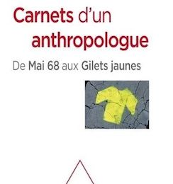 Marc Abélès : Carnets d'un anthropologue