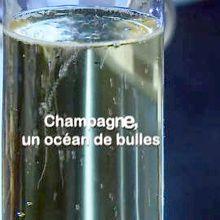 Champagne : L'odysée des bulles