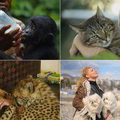 Contre la suppression de l'émission 30 Millions d'Amis - Fondation 30 Millions d'Amis