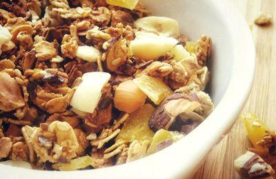 Granola maison {Noisettes, Graines de sésame et de lin, Mangue séchée & Mélange de fruits au yaourt}