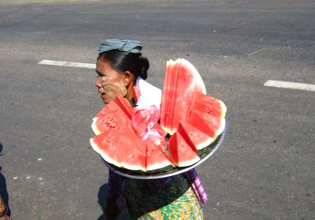 Album - Myanmar-2- Sumatra-1- 2014