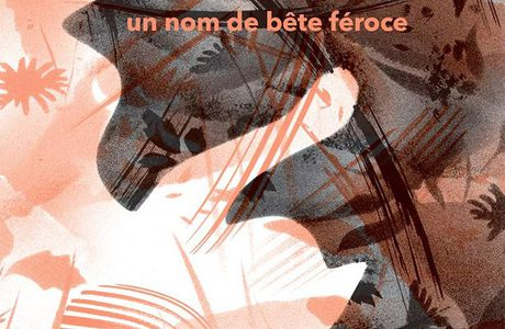 Un nom de bête féroce / Jean-Baptiste Labrune, ill. Marine Rivoal - édition du Rouergue, 2020