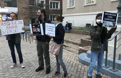 Dunkerque : le pêcheur qui avait frappé un bébé phoque finalement condamné par la justice
