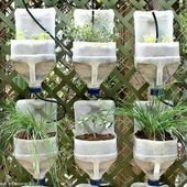 faire ses semis biodégradables