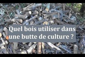 Quel bois utiliser dans une butte de culture