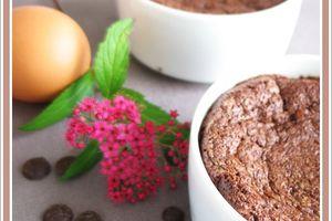 Gâteau chocolat indémoulable de Trish Deseine