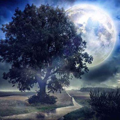 Pleine Lune du 7 mai 2020 - Guérison et compassion