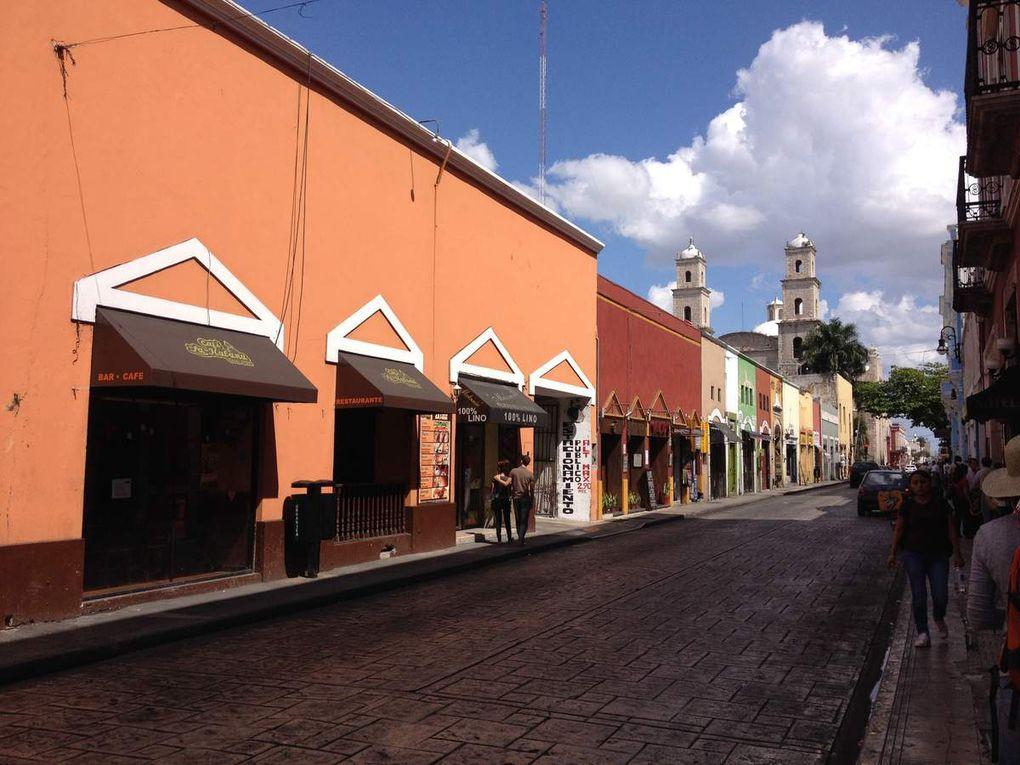 De Mexico au Yucatan en passant par Mérida, Celestun, Chichen Itza...