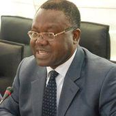 Candidat à la présidence de la BAD - Financial Afrik