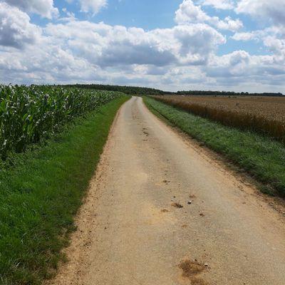3 — Licques : 19 km (68 km)