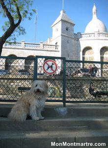 Les 3 réservoirs d'eau de Montmartre