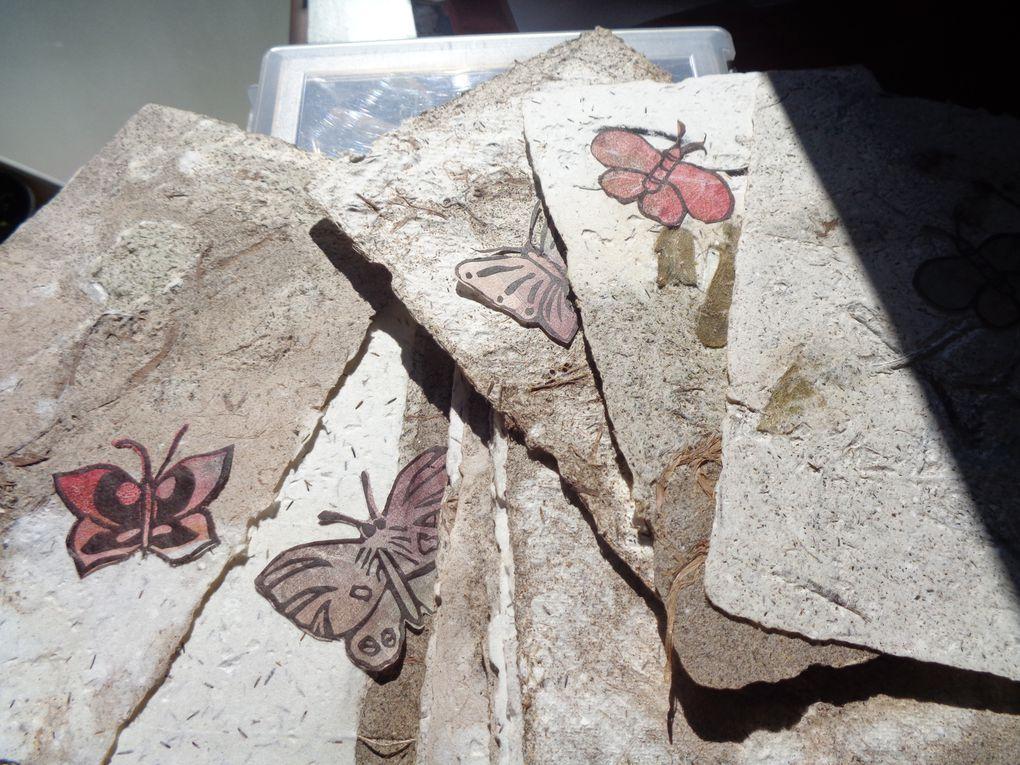 Série de gravure de papillons sur monotype de plantes