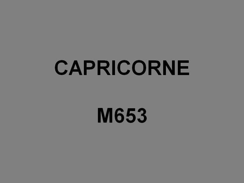 CAPRICORNE  M653 , Chasseur de mines Tripartite