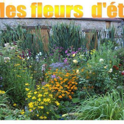 5 mes fleurs d'été